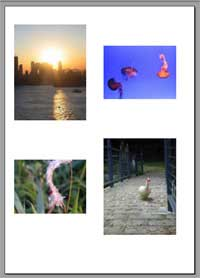 Multi photos merged into Thumbnail Index PDF